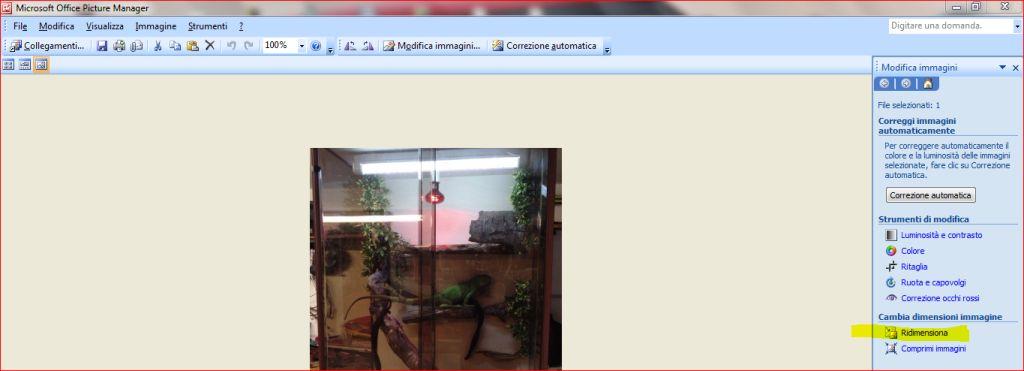 Per vedere le immagini a dimensioni ottimali effettuare il login!